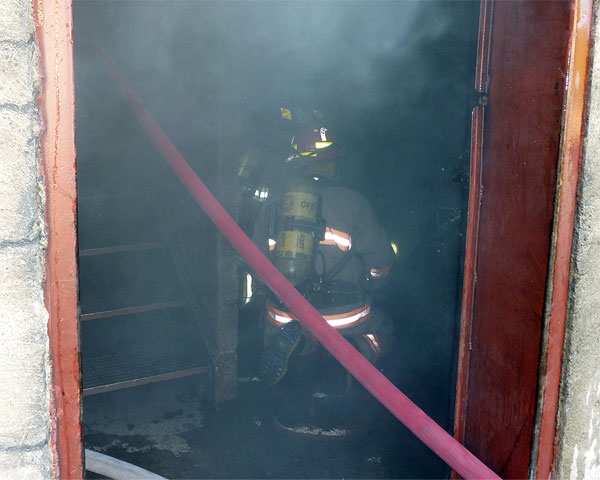 Training: Image 12 of 65