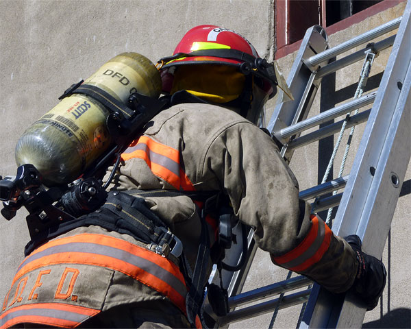 Training: Image 54 of 65