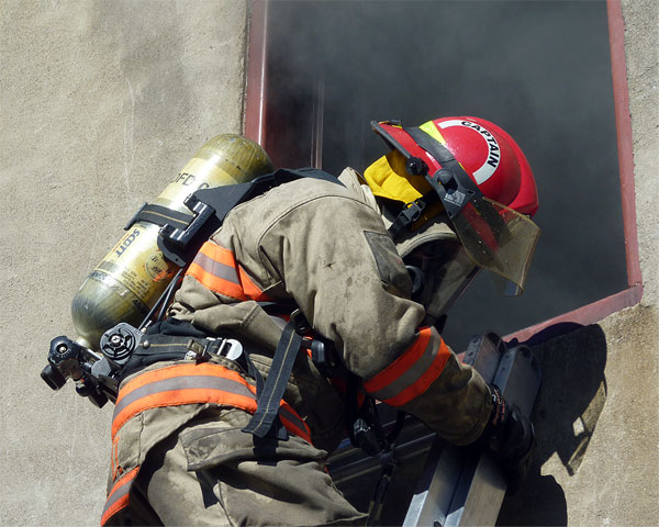 Training: Image 55 of 65