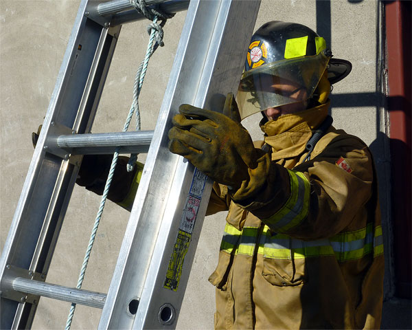 Training: Image 58 of 65